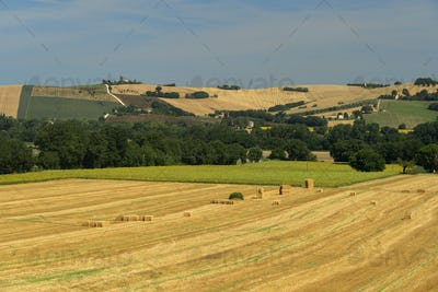 Rural landscape near Macerata, Marches