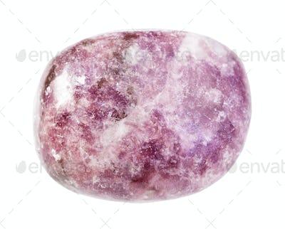 polished Lepidolite gemstone isolated on white