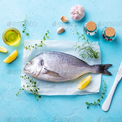 Dorado Fish with Cooking Ingredients on a Parchment Paper. Blue Background. Top View.