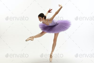 Young graceful tender ballerina on white studio background