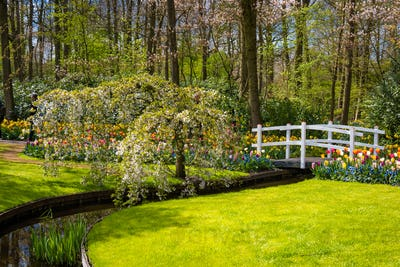 Beautiful park garden in spring.  Formal Garden