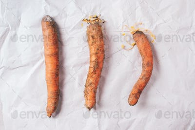 Ugly misshapen carrots on craft paper background. Concept of zero waste production. Top view. Copy