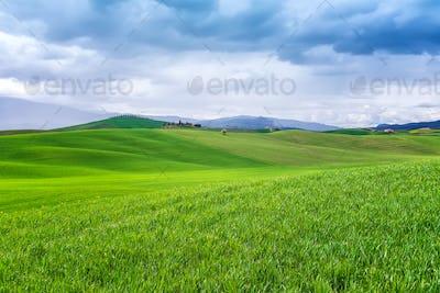 Tuscany landscape in springtime
