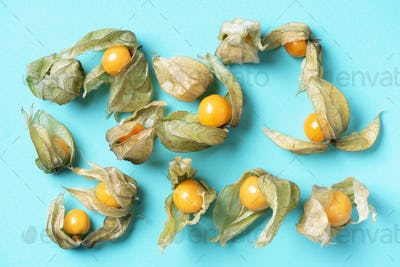 Physalis fruit with husk on blue background. Top view. Copy space. Tropical travel, exotic fruit