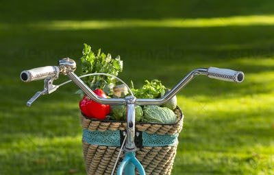 Eco bicycle delivering organic products over green park