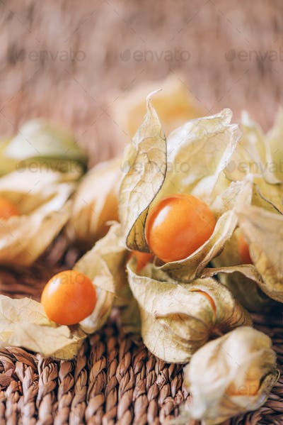 Physalis fruit with husk over palm leaves on rattan background. Copy space. Tropical travel, exotic