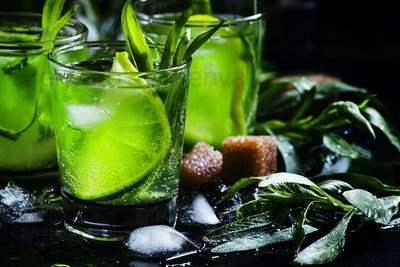 Alcoholic green cocktail with lime, lemon juice, cane sugar, soda, crushed ice and tarragon