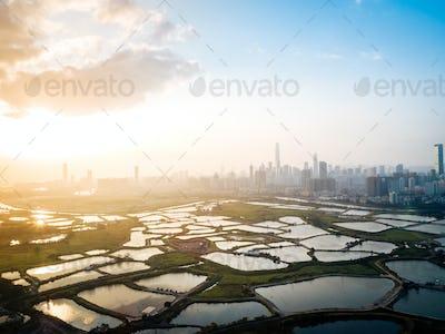 Sunset in shenzhen city