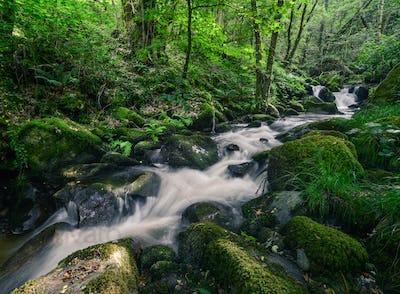 Rushing Water stumble across Nossy Stones