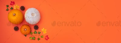 Overhead Flat Lay Autumn Banner Composed Of Pumpkins With Leaves And Pine Cones On Orange Background