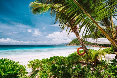Tropical scene of beautiful white sand beach, turquoise ocean lagoon and foliage. Vacation in