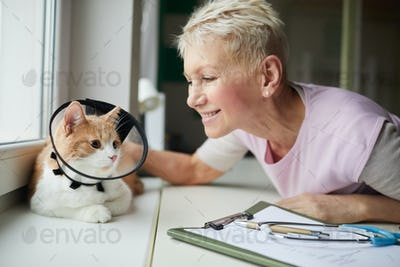 Owner with domestic cat