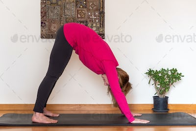 Middle aged woman practicing yoga at home, down dog pose.
