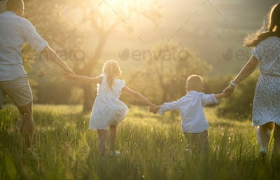 Rear view of family with two small children walking on meadow outdoors at sunset.