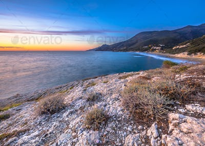 Coastal vegetation Cap Corse