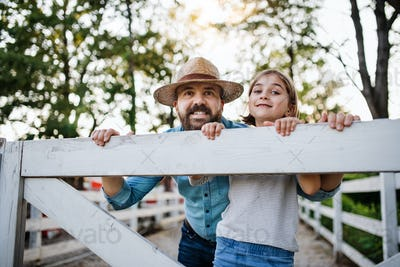 A portrait of father with small daughter outdoors on family farm