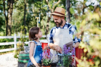 A father with small daughter outdoors on family farm, planting herbs