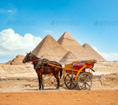 District of city of Giza