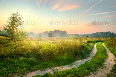Road and spring field