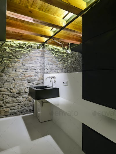 Interiors of the Modern Bathroom