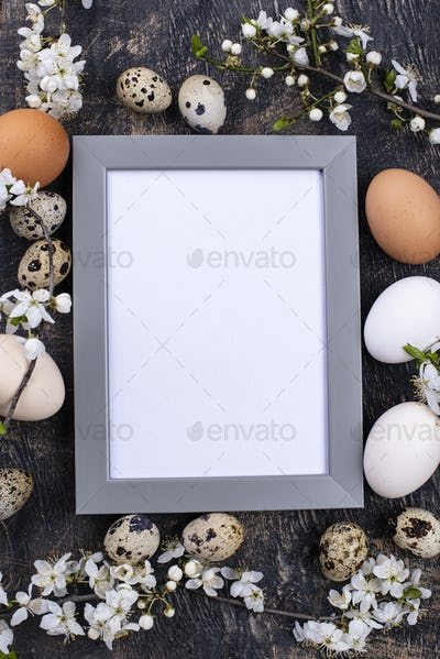 Chicken and quail eggs with blooming branch