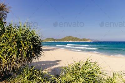 wild picturesque beach