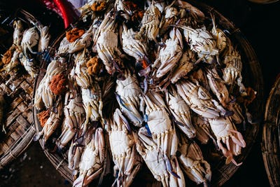Raw crad sea food at local market in asia top view