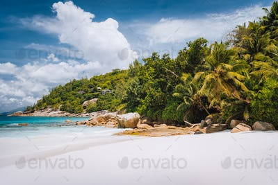 Beautiful Petite Anse beach at Mahe Island, Seychelles. Palm trees and blue sky. Holiday vacation