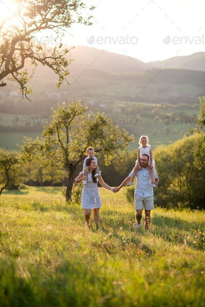 Family with two small children walking on meadow outdoors at sunset