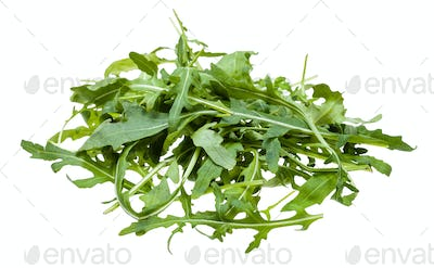 pile from fresh leaves of Arugula plant isolated
