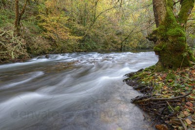 Soft Autumn Light illuminates the bed of a River