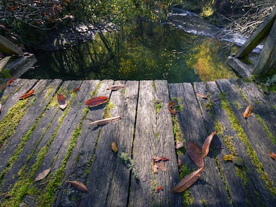 Old Boards of a Wooden Bridge covered with Moss and fallen Leaves