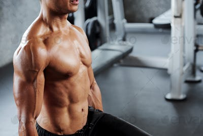 Fit muscular body of sportsman
