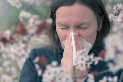 Tree pollen allergy in springtime concept