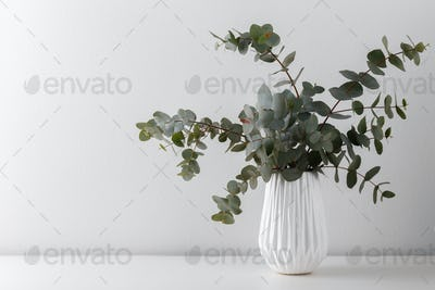 Eucalyptus in a ceramic vase
