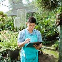 gardener or botanic worker checking some plants