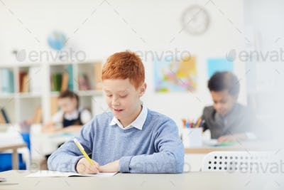 Schoolboy writing in notebook