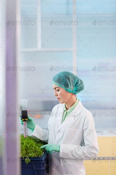 Woman working with young plants
