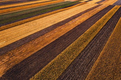 Agricultural fields from above, drone photography