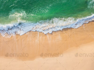 Aerial view of a tropical beach with palm trees