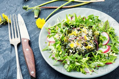 Salad with seaweed and herbs