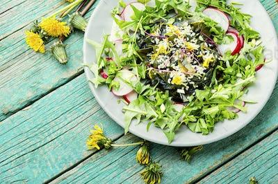 Salad with seaweed and greens