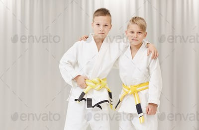 Two partners in karate