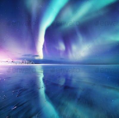 Northern lights in the Lofoten Islands, Norway.