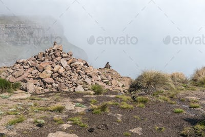 Basotho herdsman at the top of the chain ladders