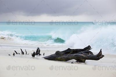 Tall Waves At Caribbean Beach, Antigua