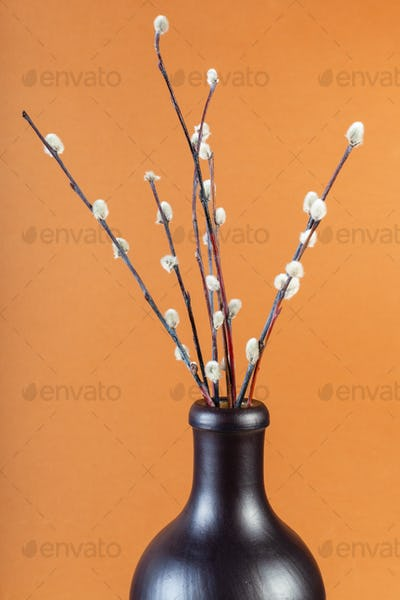 flowering pussy-willow twigs in ceramic bottle