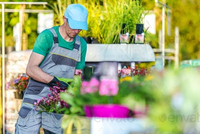 Garden Department Store Worker Takes Care Of Plants.