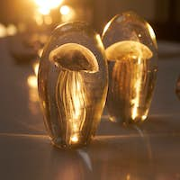 Stylish jellyfish incluse decoration standing on a table illuminated with sunlight in a cozy cafe