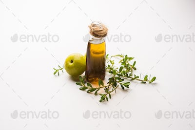 Bacopa monnieri herb with extract of Indian Gooseberry known as Ayurvedic Brahmi Amla hair oil